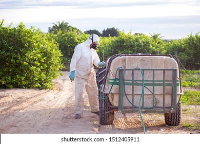 Weed control fumigation. Industrial chemical agriculture. Toxic pesticides, pesticide, insecticides on fruit lemon in growing agricultural plantation , spain. Man spraying with mask spray fumigating.