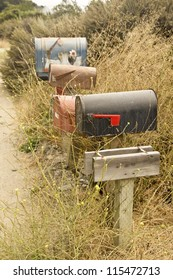 Weeds grow around a row of rural mailboxes in the countryside