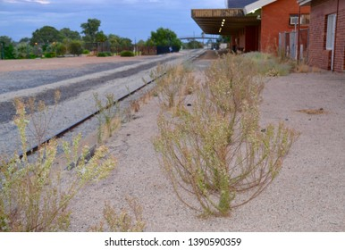 Weeds growing through the disused derelict railway platform at the Mildura station with rail tracks in the background