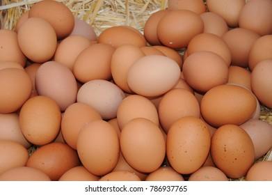 Weekly market eggs, Costa Blanca - Spain