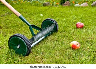Weel rakes in green orchard.