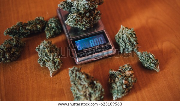 weighing of cannabis on the scales close-up. the lifestyle of a drug dealer. Shallow focus effect