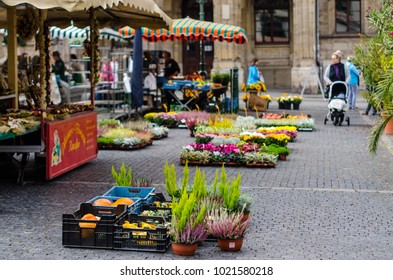 WEIMAR, THURINGIA, GERMANY, 25th SEPTEMBER 2017. Flower market in front of the city hall.