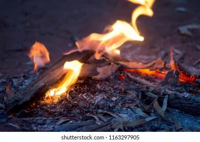Welcome to country campfire, Wilpena Pound Resort, SA, Australia