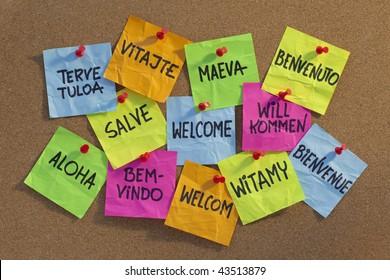 welcome in a dozen of languages (Finnish, Slovak, Tahitian, Italian, Latin, English, German, Hawaiian, Portuguese, Dutch, Polish, French) - cloud of colorful sticky notes on cork bulletin board