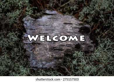 Welcome plate on wood texture. Sample. Tutorial. Birch bark in the moss. North moss and bark. Texture for the label. Ecological theme. Hunting, Fishing. Camping store. Restaurant hunting cuisine.