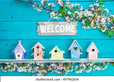 Welcome sign hanging over colorful birdhouses with butterfly on shelf by spring tree flowers on antique rustic teal blue wood background; pink, yellow, purple, orange birdhouses
