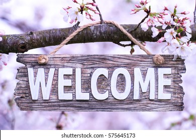 Welcome sign hanging from tree branch with spring flowers; springtime background with white blossoms blurred in background