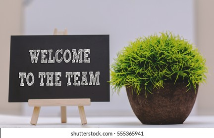 WELCOME TO THE TEAM written on chalkboard with green plant,conceptual copyspace
