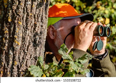 Well camouflaged behind a tree the old, experienced hunter observes his hunting area through binoculars.