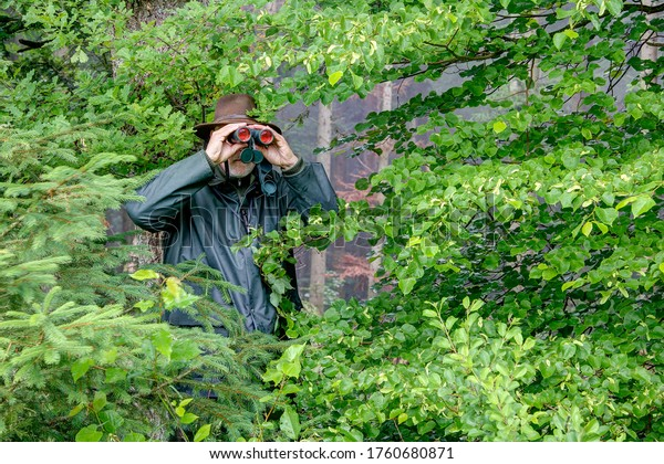 Well camouflaged between the bushes, a hunter observes the hunting area through his binoculars on a rainy day.