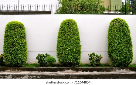 Boundary Wall Images Stock Photos Vectors Shutterstock