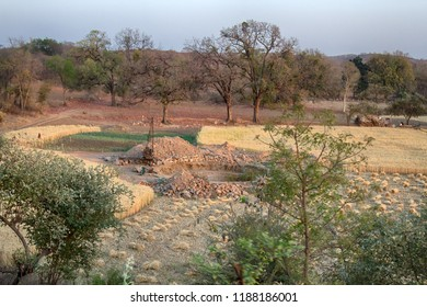 well for irrigation, digging among the wheat fields. Madhya Pradesh