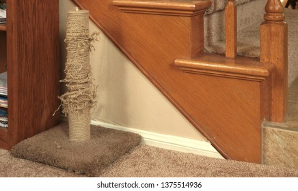 A well used and shredded cat scratching post - time for a new one or a do it yourself fix with new sisal rope