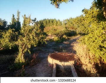 Well of water for the irrigation of the field of the center of the Iberian Peninsula. Irrigation system from shallow underground aquifer. Fruit trees and forest in the background.