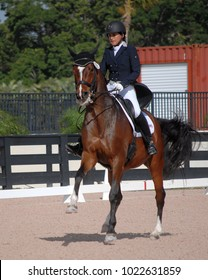 WELLINGTON, FLORIDA - February 11, 2018: Adequan Global Dressage Festival 5 competitors Michelle Batalla and Westergardnes Vivi Light in Wellington, Florida