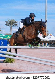 WELLINGTON, FLORIDA - January 16, 2019: Samantha Cohen and Billy Fanta taking second place at WEF 2 Netjets USEF AA/CSI 2 in Wellington, Florida
