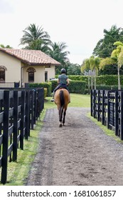 Wellington, Florida/USA - February 26, 2020: A vertical image of a horse and rider on a bridal path of an elegant horse barn in Palm Beach County, Florida.
