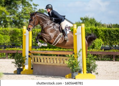 Wellington, Florida/USA - January 04, 2020: School Show at The Ridge at Wellington winter training base and home of the Palm Beach Series. Young female jockey on horse leaping over hurdle.
