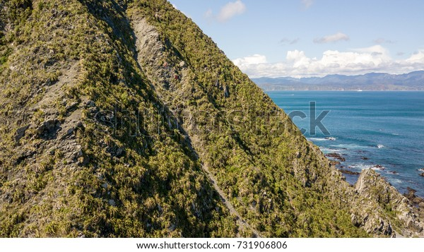 Wellington Red Rocks Shore Cliff, New Zealand