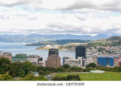 WELLINGTON,NEW ZEALAND-MARCH 8,2009: View From Wrights Hill, Wellington, New Zealand