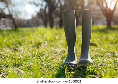 Wellingtons standing on green lawn
