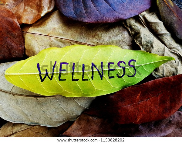 Wellness concept written on leaf