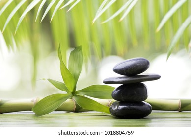 wellness environment with stack of black stones for massage on a green background with bamboo leaves