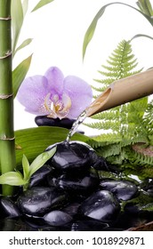 wellness environment still life with black stones and bamboo fountain in the background purple orchid flowers