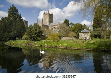 Wells cathedral viewed form the park with the river and a swan