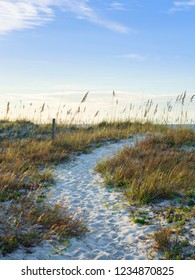 Well-worn path over the sand dunes and down to the sea.