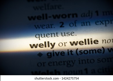welly word in a dictionary. welly concept, definition.