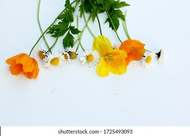 Welsh poppies and daisies on a white wooden background with copy space . Wild spring flowers in yellow , orange and white with green leaves .