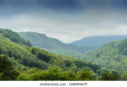 Welsh valley forests and mist before a rain storm with grey clouds and lush vegetation with nobody