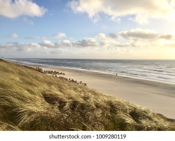 Wenningstedt beach at a clear day in fall on the island of Sylt, Germany