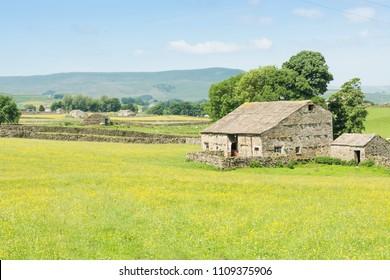 Wensleydale barns and meadows
