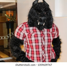 A werewolf costume for Halloween or carnival