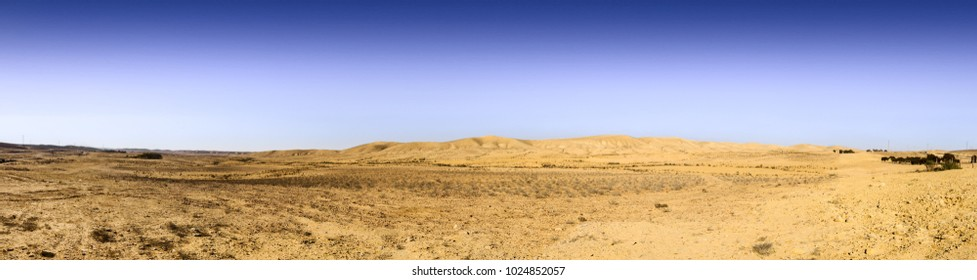 Wery wide panorama of hills in Negev Desert under blue sky