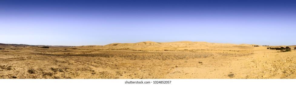 Wery wide panorama of hills in Negev Desert under blue sky