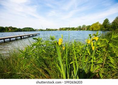 wesslinger lake in bavarian, germany, summertime