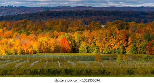 West Arm of Grand Traverse Bay from high overlook of Old Mission Peninsula in the fall.