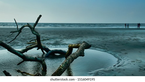 West Bengal, 05/01/2014 : Serene landscape of Henry Island, an almost empty beach near Bakkhali. A dead tree bark lies on the beach, few tourists are seen at a distance.