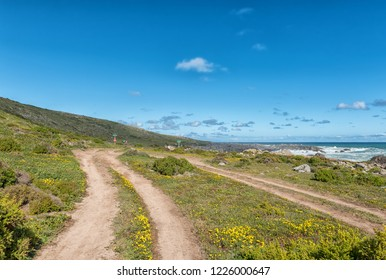 WEST COAST NATIONAL PARK, SOUTH AFRICA, AUGUST 20, 2018: Plankiesbaai at Postberg near Langebaan on the Atlantic Ocean coast of the Western Cape Province. Hikers are visible