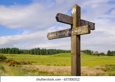 West Highland Way, Scotland - A wooden sign post with sign and icon of West Highland Way. Wooden pole with directional sign post for the West Highland Way in Scotland.