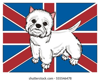 West Highland White Terrier stand on the middle of British flag