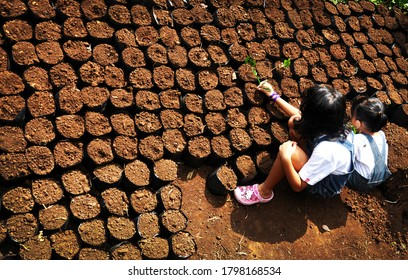 West Java, Indonesia - August, 2020: Two little girls playing and learning about conservation and seedling in the city forest in Bandung, Indonesia. At this moment playing in nature more better.