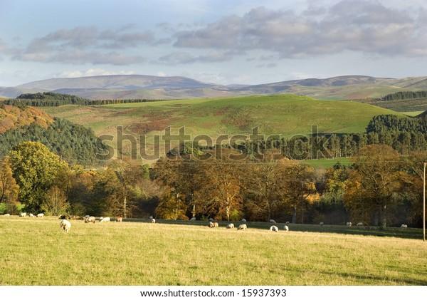 West Lothian, Scotland, November