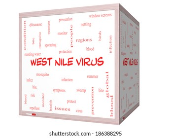 West Nile Virus Word Cloud Concept on a 3D cube Whiteboard with great terms such as mosquito, bite, infection and more.
