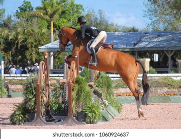WEST PALM BEACH, FLORIDA - February 24, 2018: Michael Morrisey and Pointe Milou competing at week 7 of the Winter Equestrian Festival in Wellington, Florida