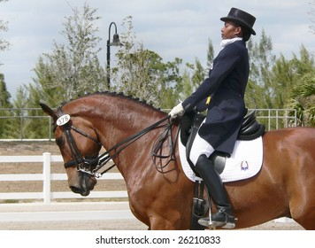 WEST PALM BEACH, FLORIDA - MARCH 6: Philesha Chandler and Ricardo compete in the Wellington Classic Dressage Challenge II on March 6, 2009 in West Palm Beach.